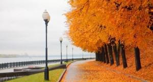 Экскурсионные туры в Ярославль